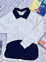Школьная обманка для девочек от 6 до 14 лет.