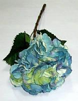 Гортензия голубая 51 см