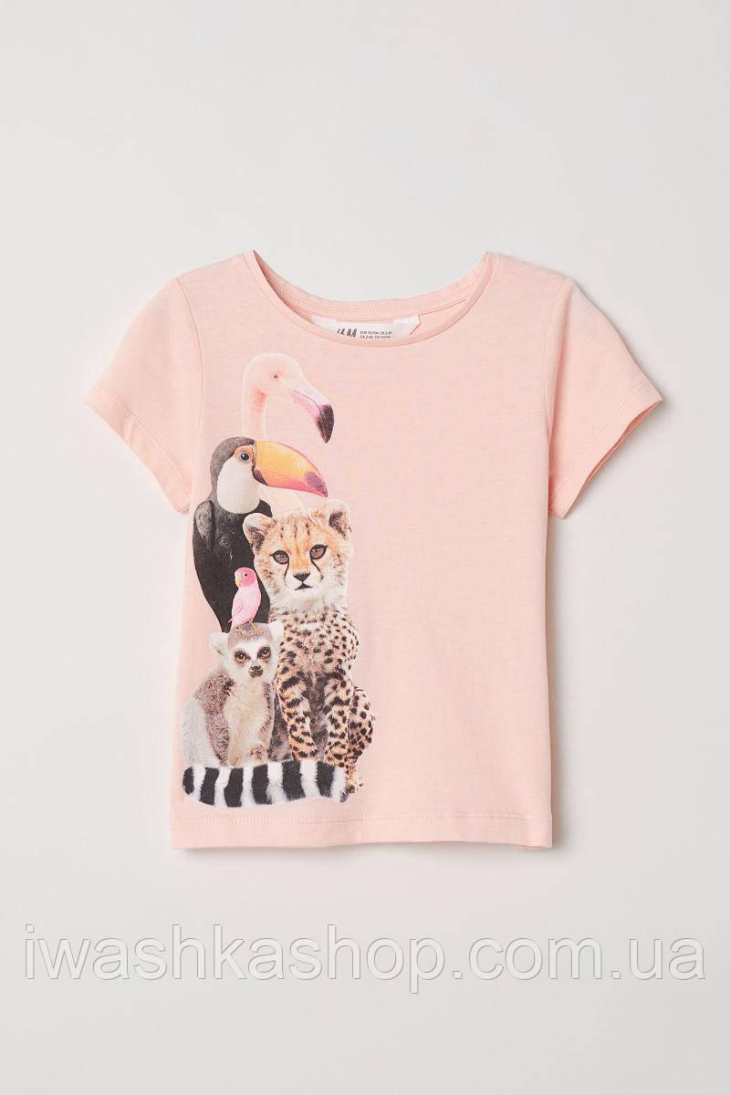 Нежная персиковая футболка с экзотическими животными для девочки 4 - 6 лет, р. 110 - 116, H&M