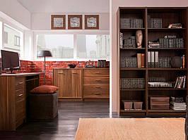 Меблі в кабінет Опен від Гербор