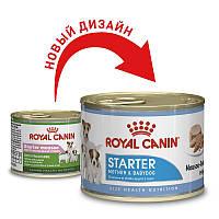 Royal Canin (Роял Канин) Starter Mousse - консервы для щенков (мусс) Вес 195гр.12шт