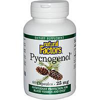 Пикногенол, Natural Factors, 25 мг, 60 капсул