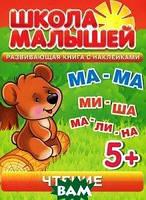 С. Разин Чтение. Развивающая книга с наклейками для детей с 5-ти лет