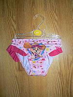 Плавки для девочек оптом, Disney, 1,1 рр., фото 1
