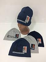 Детские демисезонные трикотажные шапки для мальчиков оптом, р.46-48 50-52, Ala Baby (Польша), фото 1