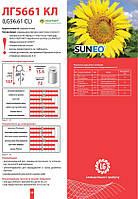 Семена подсолнечника Limagrain ЛГ 5661 КЛ (новая Тунка) урожай 2016 года.