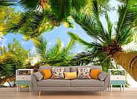 Глянцевые фотообои природа пальмы разные текстуры , индивидуальный размер