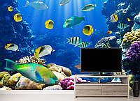 Глянцевые фотообои природа аквариум разные текстуры , индивидуальный размер