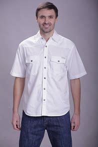 Біла чоловіча сорочка Montana р. М
