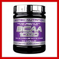 Scitec Nutrition BCAA 1000 (300 капc.)