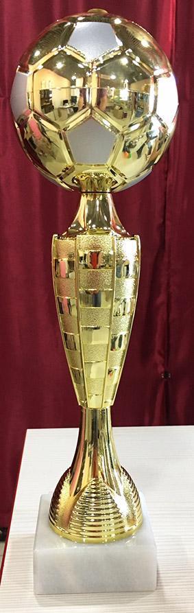 Кубок наградной FK500