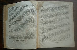 Книга коментариев к Торе (иудаика) раввина Моше Грюнвальда «Аругат Ха Бошем», 1913 год, фото 2