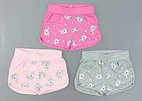 Трикотажные шорты для девочек S&D, 98-128 рр. {есть:98,104,110,116,122,128}