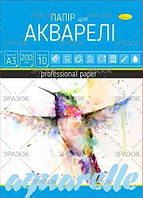Папір для акварелі А3 10 аркушів ПА-А3-10  (20), (Украина)