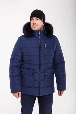 Зимние куртки мужские  большого размера  50-64 синий