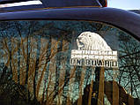 Наклейка на стекло машины Ребенок на борту, фото 5