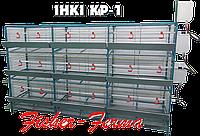 """Клетки для кур, цыплят, несушек выбор и покупка в """"ФИШЕР-ФЕРМА""""."""