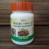 Шиладжит Расаян Дива Патанджали, Divya Patanjali Shilajeet Rasayan, 120таблеток, фото 1