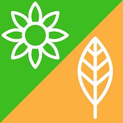 Конверты на выписку весна и осень