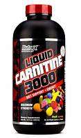 Lipo 6 Liquid Carnitine 3000