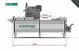 Термоформер для овочів Scandivac, фото 2