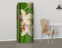 Магнитная наклейка на холодильник Орхидеи на мокрых листьях, виниловый магнит, 600*1800 мм, Лицевая