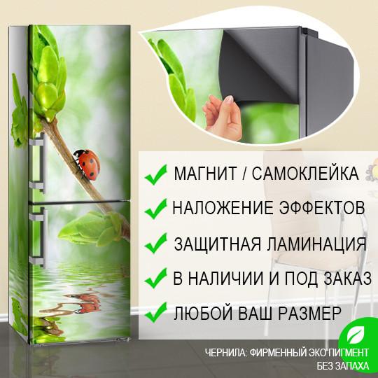Магнитная наклейка на холодильник Божья коровка и зеленые почки Весна (виниловый магнит), 600*1800 мм, Лицевая