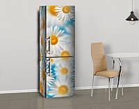 Магнитная наклейка на холодильник Белые ромашки на голубом фоне (виниловый магнит), 600*1800 мм, Лицевая, фото 1