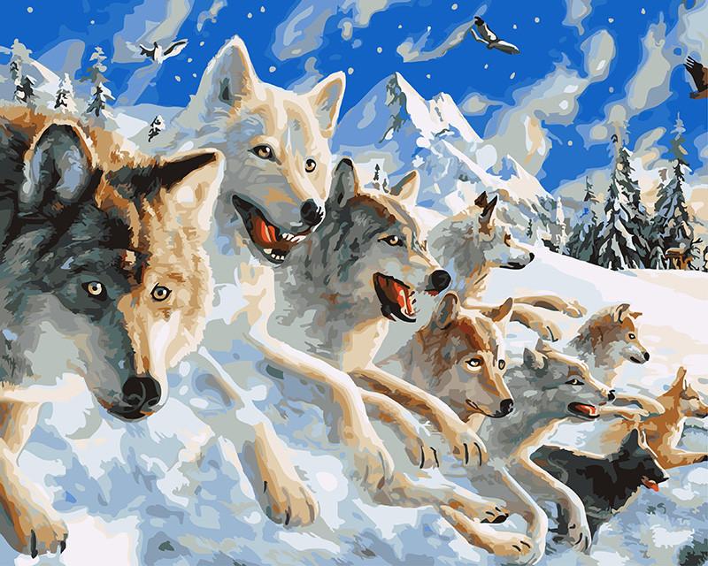 Картина по номерам Снежные волки 40 х 50 см (BRM27424)