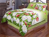 Постільна білизна бязь голд євро розміру - Тюльпан зелений