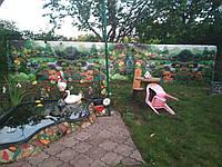 Забор фото с картинкой, декор, украшение для дома и сада