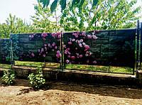 """Фотосетка """" пОртал""""  с картинкой для садовой архитектуры и ландшафтного дизайна."""