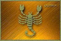 Схема для вышивки бисером Знаки зодиака. Скорпион КМР 5078