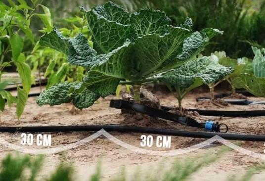 """Капельный полив для сада и огорода система """"Капля"""" 50м."""