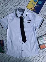 Рубашка  для мальчиков от 6 до 9 лет., фото 1