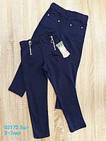 Лосины-брюки школьные для девочек 3-7 лет. Оптом. Турция. Синие.