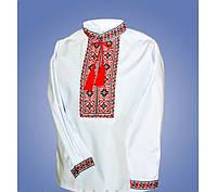 Вышитая рубашка с длинным рукавом для мальчика