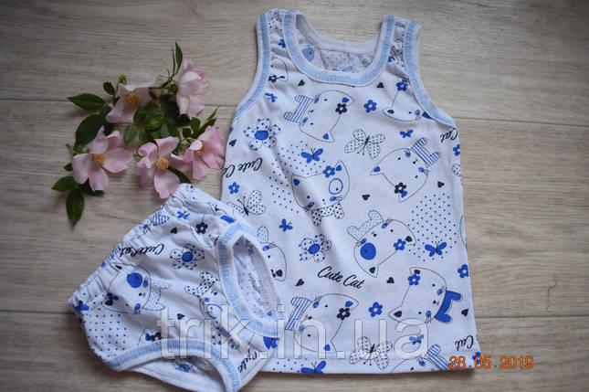 Комплект нижнего белья для девочки хлопок рисунок киса, фото 2