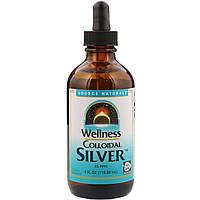 Source Naturals, Коллоидное серебро для хорошего самочувствия, 45 PPM, 118,28 мл (4 жидкие унции)