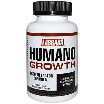Labrada Nutrition, HumanoGrowth, 120 капсул