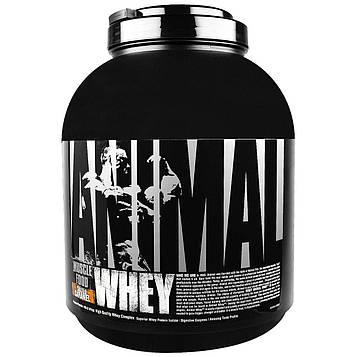 Universal Nutrition, Animal, сыворотка, питание мышц, соленая карамель, 4 фунта (1.81кг)