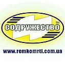 Набор прокладок для ремонта двигателя Д-245 трактор МТЗ (прокладка паронит 0.8 мм.) (малый набор), фото 3