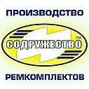 Набор прокладок для ремонта двигателя Д-245 трактор МТЗ (прокладка паронит 0.8 мм.) (малый набор), фото 2