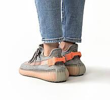 Женские кроссовки в стиле Adidas Yeezy Boost 350 V2 True Form (36, 37, 38, 39, 40 размеры), фото 2