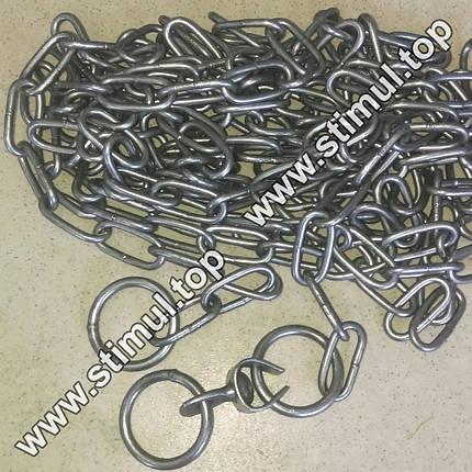 Ø 3 мм х 2 метра / цепь для собак (скота) привязочная / ланцюг з кільцем та вертлюгом, фото 2