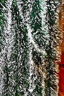 Мишура темно-зеленая (белый кончик), длина 1.5м, диаметр 100мм Харьков., фото 1