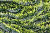 Мишура темно-зеленая (салатный кончик) , длина 1.5м, диаметр 100мм Харьков.