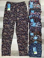 Cултанки, брюки женские цветные бамбук Kenalin, без карманов, размер L-2XL (48-52), 009-4
