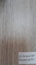 Двері Оміс Вероніка СС+ФП. Полотно, ПВХ, фото 2