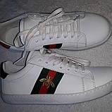 Кеды белые  Gucci, фото 2